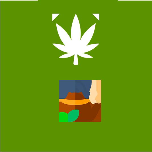 Иконка категории